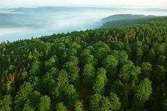 kellerwald edersee nationalpark